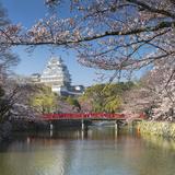Himeji Castle (Unesco World Heritage Site), Himeji, Kansai, Honshu, Japan Photographic Print by Ian Trower