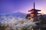 Japan, Yamanashi Prefecture, Fuji-Yoshida, Chureito Pagoda, Mt Fuji and Cherry Blossoms Fotografie-Druck von Michele Falzone