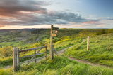 United Kingdom, England, North Yorkshire, Sutton Bank. a Signpost on the Cleveland Way. Photographic Print by Nick Ledger