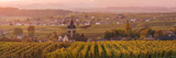 Ville Dommange and its Vineyards, Champagne Ardenne, France Photographic Print by Matteo Colombo