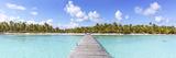 Jetty to Tropical Island, Tikehau Atoll, Tuamotus, French Polynesia Photographic Print by Matteo Colombo