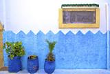 Decorative Window, Oudaia Kasbah, Rabat, Morocco, North Africa Photographic Print by Neil Farrin