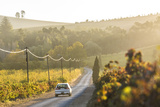 Car and Road Through Winelands and Vineyards, Nr Franschoek, Western Cape Province, South Africa Photographic Print by Peter Adams