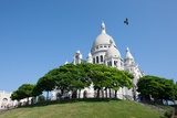 The Sacre Coeur, Paris. July 7, 2013 Photographic Print by Gilles Targat