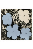 Flowers, 1965 (3 blue, 1 ivory) Print by Andy Warhol