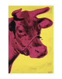 Cow, 1966 (yellow & pink) Posters by Andy Warhol