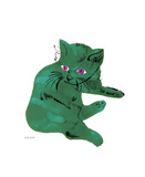 Cat From