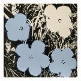 Andy Warhol - Flowers, 1965 (3 blue, 1 ivory) Obrazy