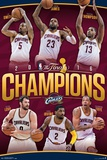2016 NBA Finals- Champions Rollcall Posters