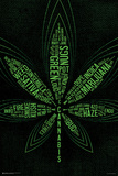99 Cannabis Terms Posters
