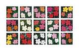 Flowers (various), 1964 - 1970 Giclée-tryk af Andy Warhol