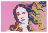 Details of Renaissance Paintings (Sandro Botticelli, Birth of Venus, 1482), 1984 (pink) Posters by Andy Warhol