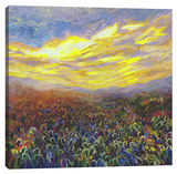 Cacti Sunrise Stretched Canvas Print by Iris Scott