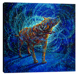 Polarized Stretched Canvas Print by Iris Scott