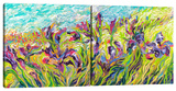 Irises by Iris (Diptych) Stretched Canvas Print by Iris Scott