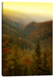 Night Falls On Autumn Stretched Canvas Print by Dano