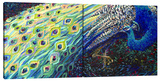 Black Peacock (Diptych) Stretched Canvas Print by Iris Scott