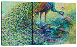 Peacock (Diptych) Stretched Canvas Print by Iris Scott