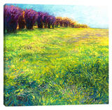Aspen's In Jackson Stretched Canvas Print by Iris Scott
