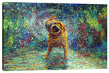 Shakin' Jake Stretched Canvas Print by Iris Scott
