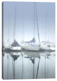 Misty Marina II Stretched Canvas Print by Dano