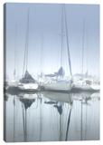 Misty Marina II Stretched Canvas Print by Dano