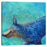 Shaking Blue Heeler Stretched Canvas Print by Iris Scott