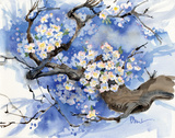 Cherry Blossoms II Art by Brent Paul