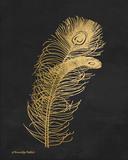 Feather on Black II Prints by Babbitt Gwendolyn