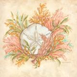 Coral Reef IV Prints by McRostie Kate