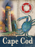 Cape Cod Posters by Todd Williams