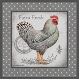 Farm Fresh Eggs I Prints by Babbitt Gwendolyn