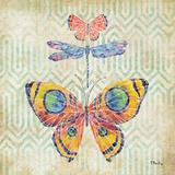 Enchanting Wings I Prints by Paul Brent