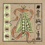 Fresh Peas Prints by McCollum Sudi