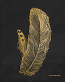 Feather on Black I Print by Gwendolyn Babbitt