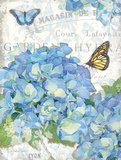 Garden Hydrangea I Prints by Julie Paton