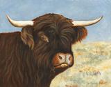 Highland Cow Posters by Gwendolyn Babbitt
