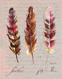 Feathers Fig 2 Prints by Gorham Gregory