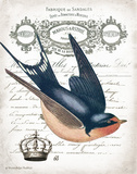French Swallow II Prints by Gwendolyn Babbitt