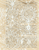 Artichoke Patterns VIII Prints by Adkin Arielle