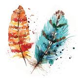 Feathers II Prints by Sara Berrenson
