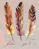 Feathers Fig 1 Affiche par Gorham Gregory