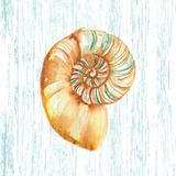 Beachcomber On Blue IV Prints by Sara Berrenson