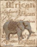 African Prints by Jones Catherine