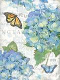 Garden Hydrangea II Posters by Julie Paton