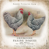 Chicken Pair II Poster par Gwendolyn Babbitt