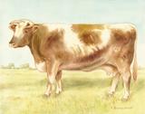 Cow Print by Babbitt Gwendolyn