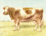 Cow Print by Gwendolyn Babbitt
