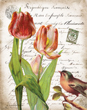 French Botanical II Prints by Gwendolyn Babbitt