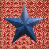 American Star II Prints by Paul Brent